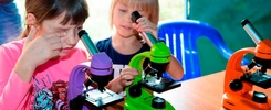 10 причин, чтобы пойти на ЭкоФест-2017 с детьми